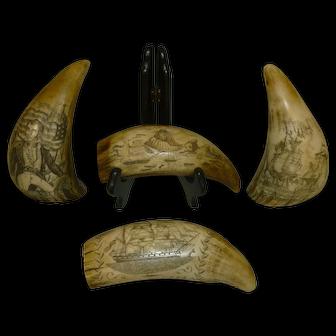 Scrimshaw on Faux Whales Teeth