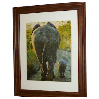 Elephants Framed picture of Mother and Child