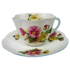 Shelley  Porcelain Begonia Cup and Saucer