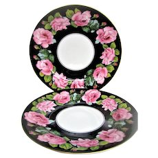 Two Blooming Pink Roses on Black Background English Plates
