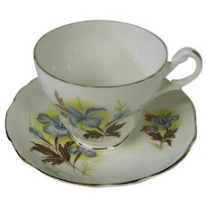 English Fine Bone China Cup and Saucer, Blue Iris