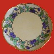 Charlotte, Hutschenreuther, Bavaria Arts and Crafts Plate, 1890 - 1910