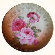 Empire Zeh Scherzer & Co. Bavaria Plate, 1880 - 1918