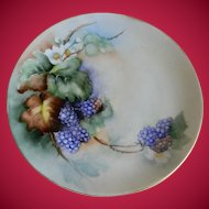 Weimar Germany Hand Painted Plate, Artist Signed, 1912