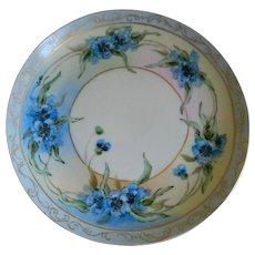 Antique Hutschenreuther Josephine China Bavaria Favorite Hand Painted Plate, 1890  until 1910