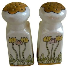 Antique Arts and Crafts Bavarian Salt and Pepper Shakers