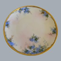 """Early 1900""""s Hand Painted Hutschenreuther Plate"""