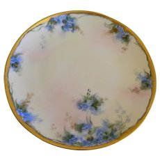 "Early 1900""s Hand Painted Hutschenreuther Plate"