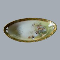 R S Germany Hand Painted, Cotton Plant Bowl