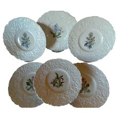 Royal Cauldon Bristol Ironstone Woodstock Floral Plates