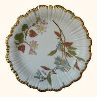 Antique, 1890, Royal Worcester Botanical Plate