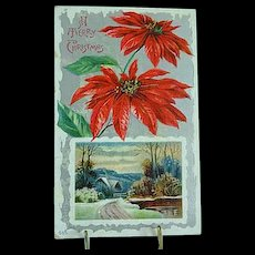 1909 Embossed Christmas Postcard Poinsettias Christmas Flower
