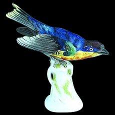 Fine Antique German Dresden Porcelain Colorful Bird On Perch