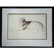 Large Vintage Signed 'Haller' Original Etching Titled 'Stretching Cat'