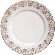 Antique Jean Pouyat French Limoges Porcelain Dinner Plate