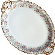 Antique Jean Pouyat French Limoges Porcelain Platter