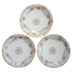 Set Of Three Antique French Haviland Limoges Plates