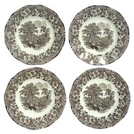 Set Of Four Wedgwood Woodland Brown Transferware Plates
