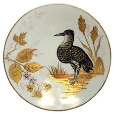 Rare 19th Century Pirkenhammer Fischer Mieg Porcelain Bird Plate