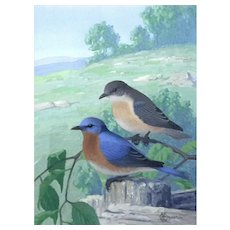 Bertram George Bruestle Original Gouache Painting Of Eastern Bluebirds