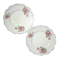 Pair Of Dresden Rose Plates