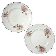 Pair Of Dresden Rose Plates