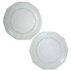 Pair Of Brougham & Mayer Virginia Pattern Ironstone Plates