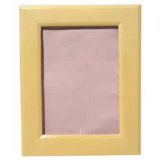 Mid-Century Vintage Celluloid Picture Frame