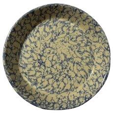 Robinson Ransbottom Roseville Spongeware Pie Plate