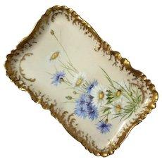 Haviland Limoges French Porcelain Tray