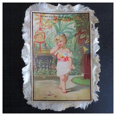 19C French Silk Fringed Birthday Card Darling Girl Parrots
