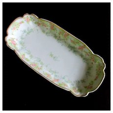 Limoges Pitkin &  Brooks Relish Tray
