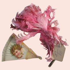 Antique French Millinery Feathers & Victorian Cherub Fan Card