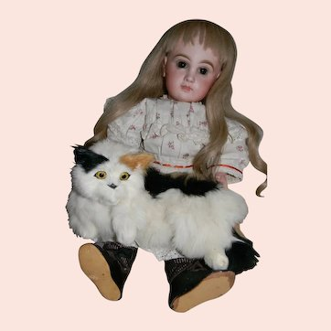 Calico Cat, Doll Companion, Long Haired Sweetie