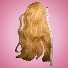 Human Hair Wig circa 1895 from a Bru Doll