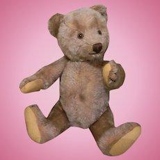 Cute Fully Jointed Mohair Bear for Doll Companion