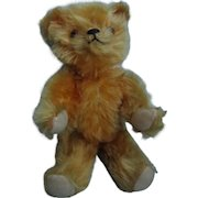 Vintage 1930's Jointed Mohair Teddy Bear