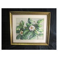 A Vintage American Watercolor of Magnolia Blossoms