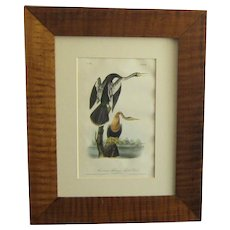 "A First Octavo Edition Hand Colored Lithograph of Audubon's ""American Anhinga - Snake Bird"""