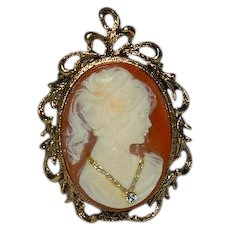 Rare Picture Framed Cameo Pendant One of a Kind