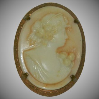 Very Early Celluloid Cameo Brooch Victorian