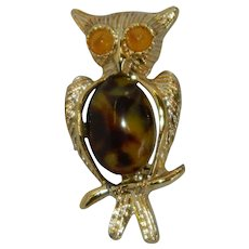 Funky Art Glass Jelly Belly Owl Pin