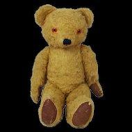 Edwardian Musical Teddy Bear