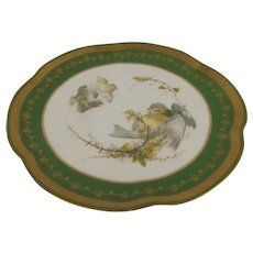 1906 Royal Worcester Blue Tit Bird Plate Signed By Charles Baldwyn