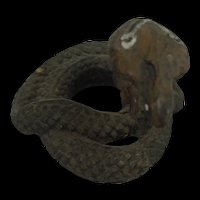 19th Century Indian Polychrome Cobra Snake