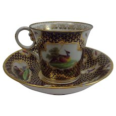 Circa 1785 Worcester Exotic Birds Tea Cup And Saucer