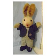 Vintage Dressed Boy Rabbit