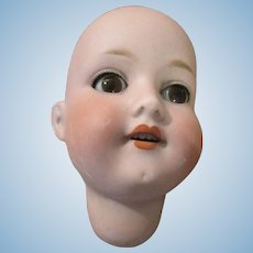 Antique Bisque Doll Head with Glass Eyes