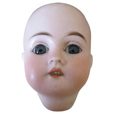 Antique Bisque Doll Head Marked 0