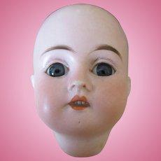 Antique Bisque Doll Head Marked 0